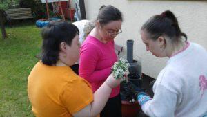 Fetele și Florile
